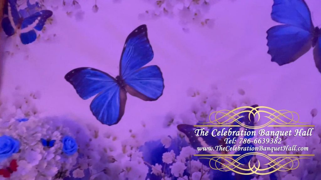 Butterfly Theme Quinceanera